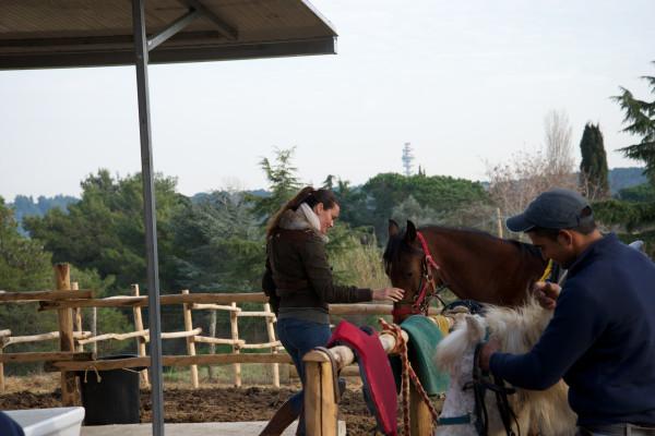 equitazione integrata