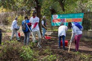 volontariato per l'ambiente