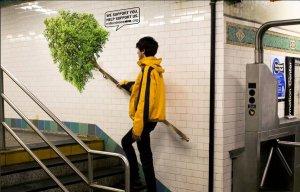 campagna ambiente