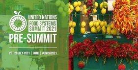 pre-vertice del Food System Summit
