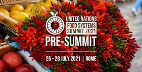 food system summit